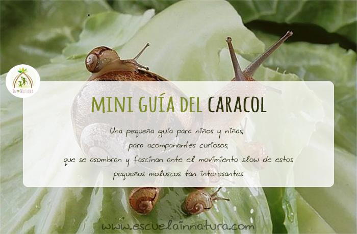 Mini Guia Caracoles