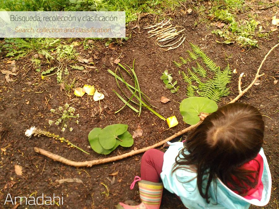 Crear mandalas en la naturaleza