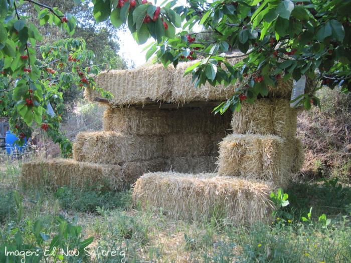 cabanas paja el safareig