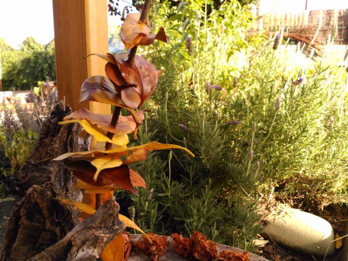 escultura hecha con hojas