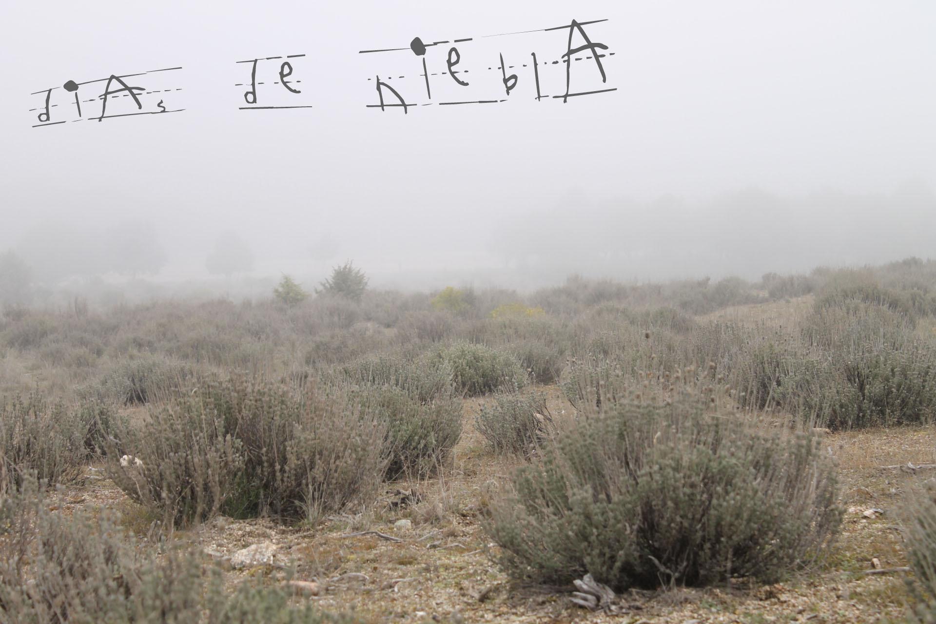 """Campo de lavanda de la sierra madrileña. Apenas se ve el horizonte por la niebla. Sobre ella pone """"Día de niebla"""" con letras irregulares"""