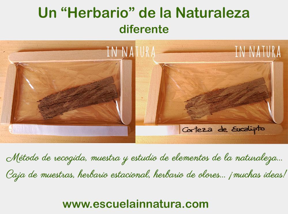 herbario de la naturaleza diferente