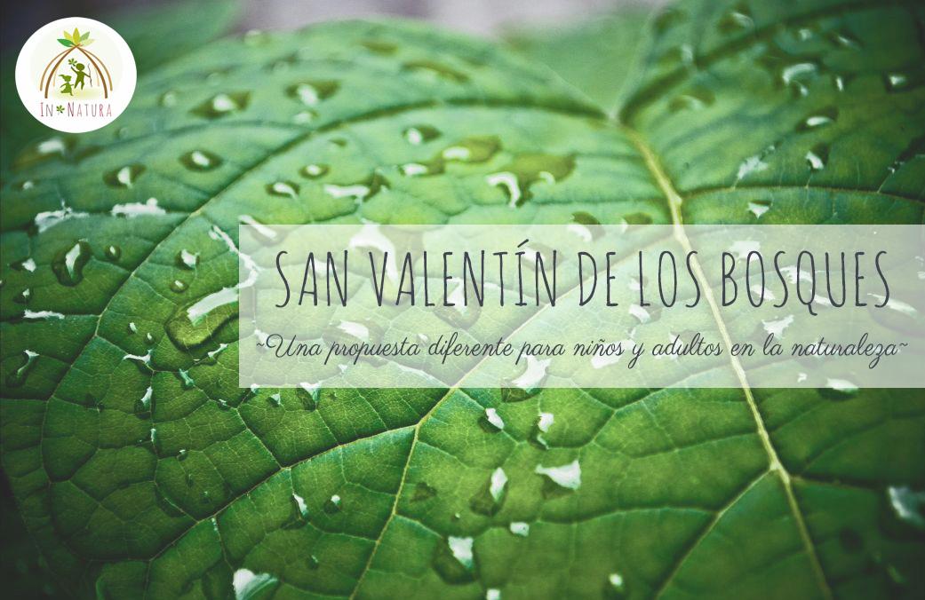 San Valentín en los bosques