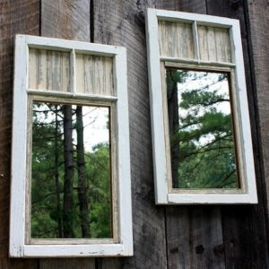 espejos en la naturaleza