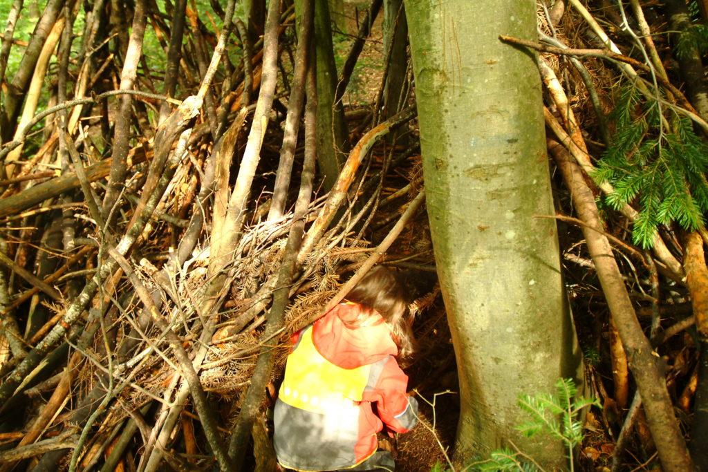 refugio de niños en la naturaleza