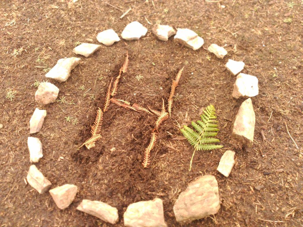 Naturaleza como escenario de aprendizaje