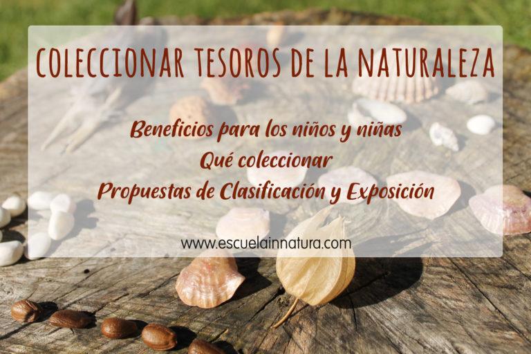 coleccionar tesoros naturales