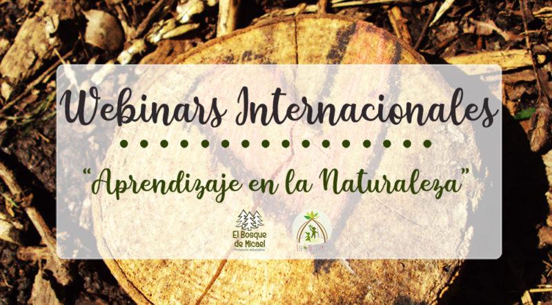 webinars internacionales II Encuentro