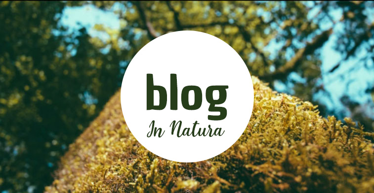 blog in natura