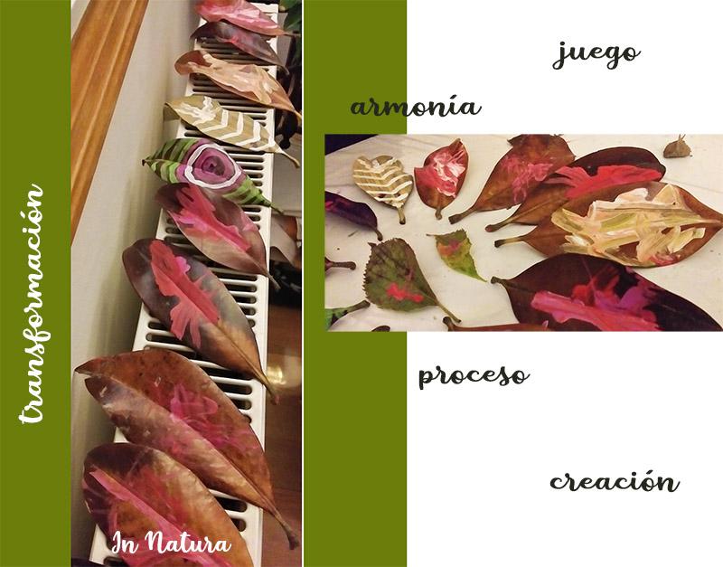 secado de hojas de magnolio