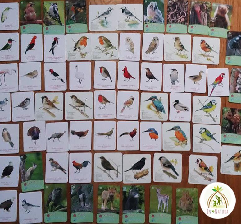 cartas sobre naturaleza