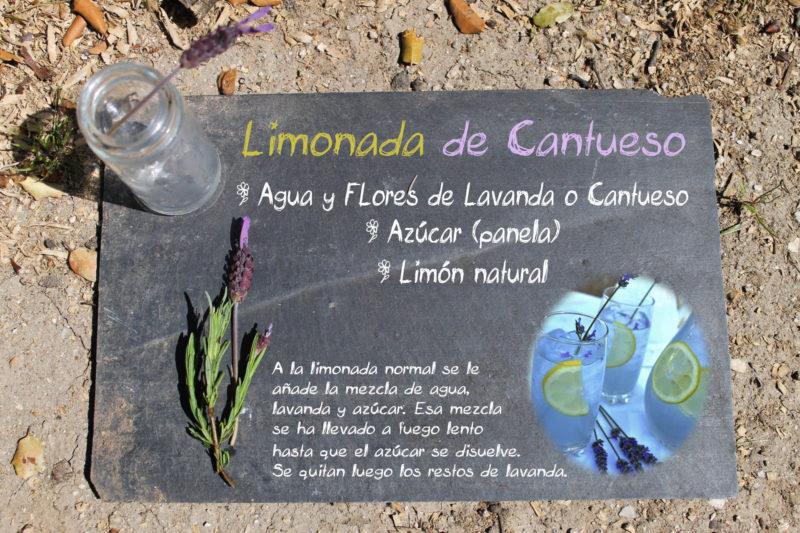 limonada de cantueso
