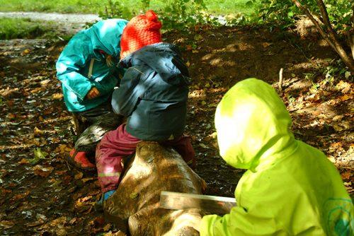 niños en escuela bosque